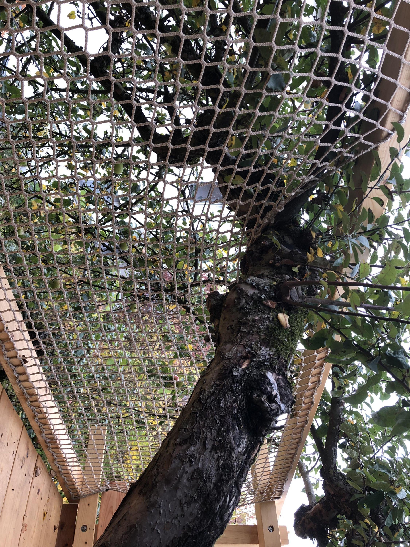 Balkon Schutznetz Fur Kinder Nach Mass Schutznetze24