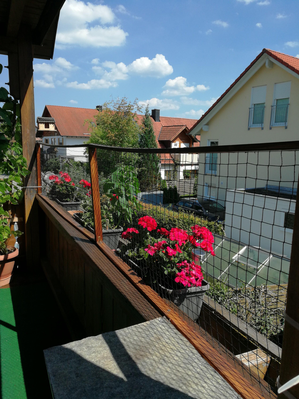 Katzensicherung terrassentur for Sicherung fur balkontur